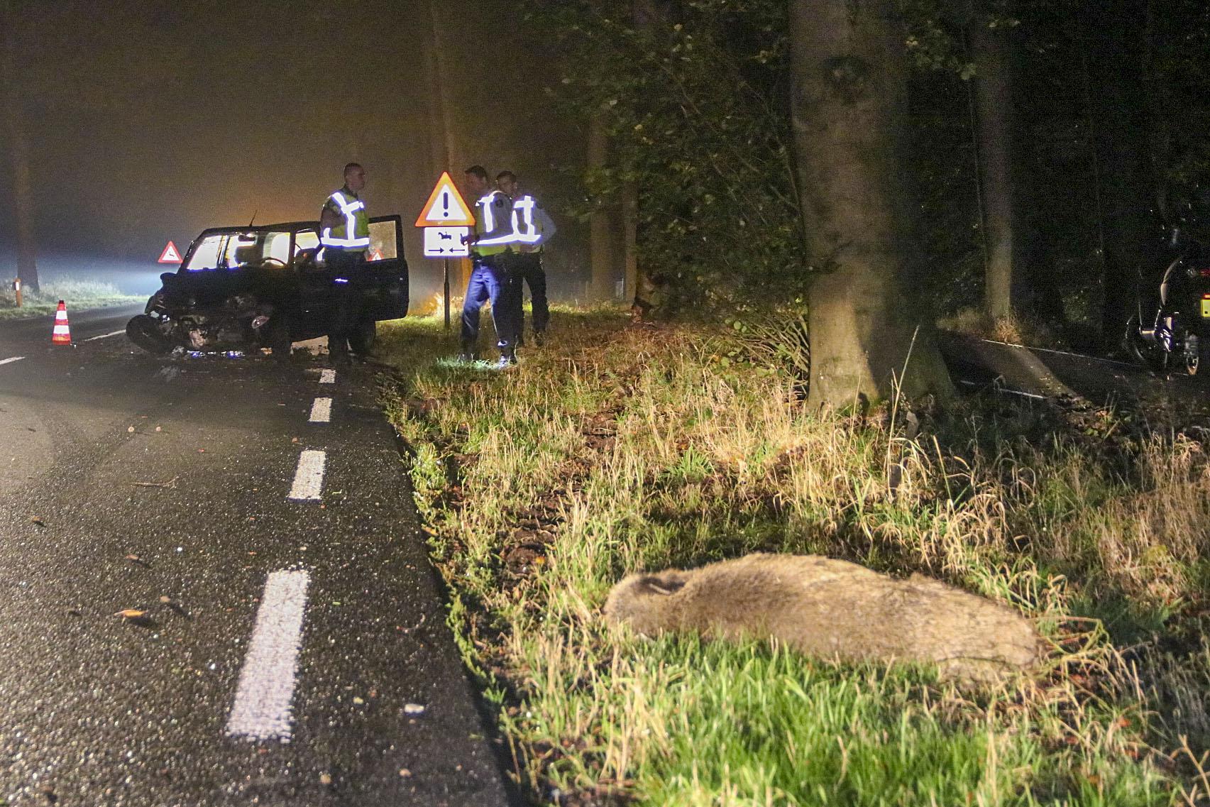 Bestuurder gewond en auto total loss na botsing met zwijn in Ugchelen.